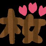 2016/04/10 接戦の末、ジュエラーが桜花賞を制す!メジャーエンブレム完敗。&本日の投資競馬結果。