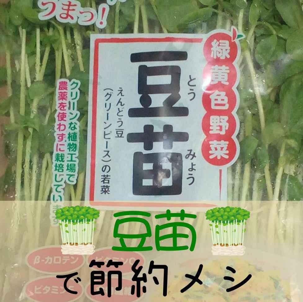 """""""豆苗""""再生栽培の育て方と食べ方。モヤシと並ぶ栄養満点な節約メシ!。"""